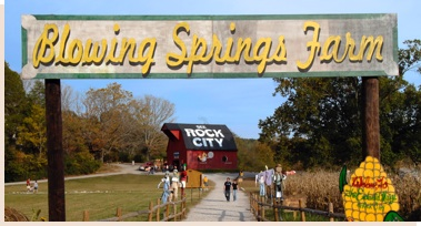 Blowing Springs Farm Sign