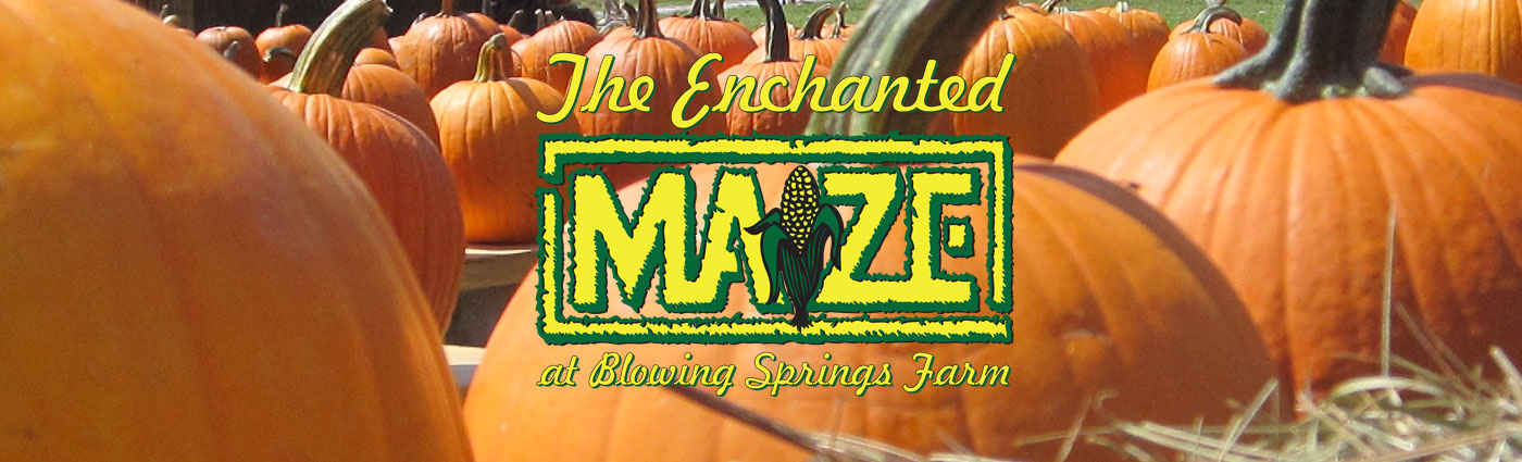 Enchanted Maize logo